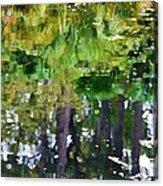 Pond 7 Acrylic Print