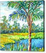 Pond And Palm Acrylic Print