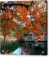Fall At Lost Maples State Natural Area Acrylic Print