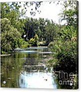 Pond At Tifft Nature Preserve Buffalo New York  Acrylic Print
