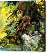 Pond Fairy Acrylic Print