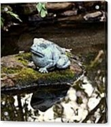 Pond Frog Statuette Acrylic Print