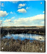 Pond Hole Acrylic Print