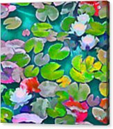 Pond Lily 5 Acrylic Print
