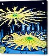 Pond Lily Pad Abstract Acrylic Print