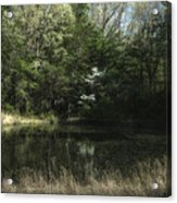 Pond Of Dreams Acrylic Print by Paul Herrmann