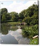Pond Reflection - Central Park Acrylic Print