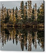 Pond Reflections Acrylic Print