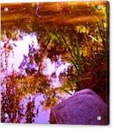 Pond Reflextions Acrylic Print
