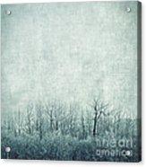 Pondering Silence Acrylic Print by Priska Wettstein