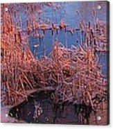 Ponds Edge Acrylic Print