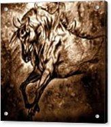 Pony Express Acrylic Print