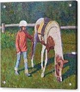 Pony Acrylic Print by Terry Perham