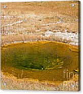 Pool In Upper Geyser Basin In Yellowstone National Park Acrylic Print