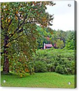 Poplar Tree In The Valley Acrylic Print