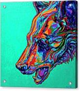 Poppa Bear Acrylic Print