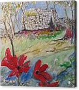 Poppies And Ruins Acrylic Print