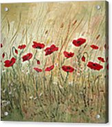Poppies And Wild Flowers Acrylic Print