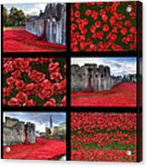 Poppies At The Tower Collage Acrylic Print