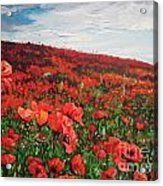 Poppies Impression Acrylic Print by Andrei Attila Mezei