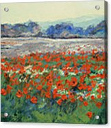 Poppies In Flanders Fields Acrylic Print by Michael Creese