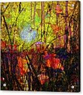 Poppies In Paradise Acrylic Print
