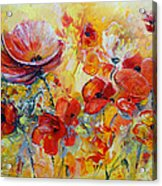 Poppies On Fire Acrylic Print