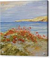 Poppies On The Beach Acrylic Print