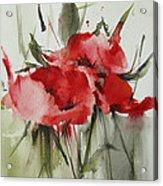 Poppy 1 Acrylic Print