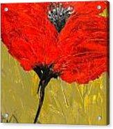 Poppy 46 Acrylic Print