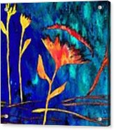 Poppy At Night Abstract 2 Acrylic Print