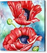 Poppy Duet Acrylic Print