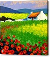 Poppy Field - Ireland Acrylic Print by John  Nolan
