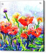 Poppy Fields Acrylic Print