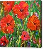 Poppy Frenzy Acrylic Print by Barbara Pirkle