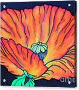 Poppy I Acrylic Print