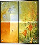 Poppy Pollination Acrylic Print