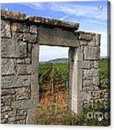 Portal Of Vineyard In Burgundy Near Beaune. Cote D'or. France. Europe Acrylic Print by Bernard Jaubert
