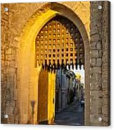 Portcullis Aigues-mortes  Languedoc-roussillon France Acrylic Print by Colin and Linda McKie