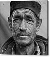 Portrait Of A Shepard Acrylic Print