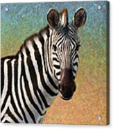 Portrait Of A Zebra - Square Acrylic Print