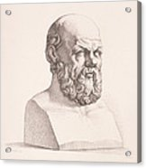 Portrait Of Socrates Acrylic Print by CC Perkins