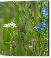 Portrait Of Wildflowers Acrylic Print