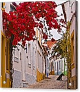 Portuguese Back Street Acrylic Print
