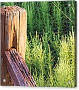 Post And Rail At Sunset Acrylic Print