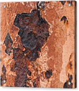 Post In Decay  Acrylic Print