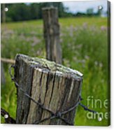 Post Script Acrylic Print by The Stone Age