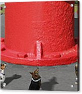 Postcards From Otis - The Hydrant Acrylic Print by Mike McGlothlen