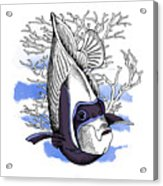 Poster With Image Of Fish Emperor Acrylic Print