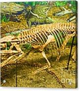 Postosuchus Fossil Acrylic Print